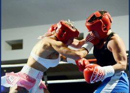 KS Promotions Fight Night Exo Bridges vs Elmir